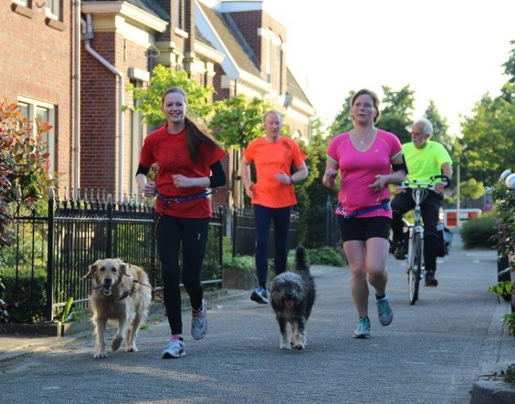 Dogrun clinics4running